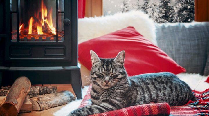 Winter-Beitragsbild