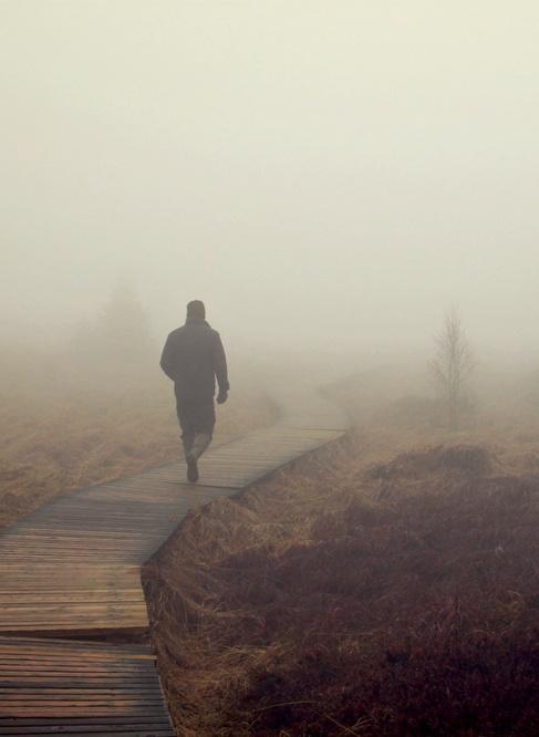 Erwartung im Nebel