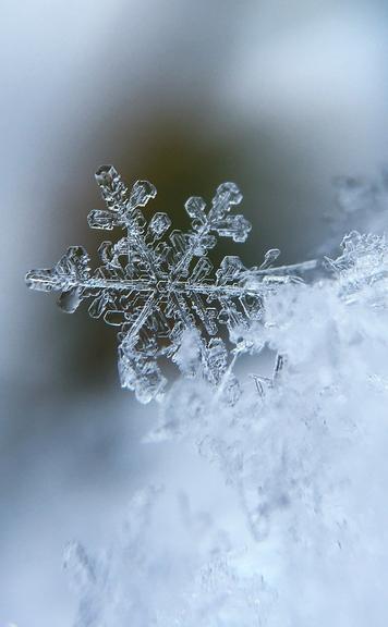 Ute Jaguttis - Nicht wissen - Schneekristall